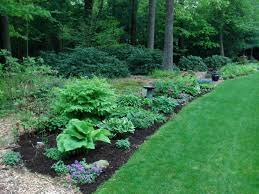 fall blooming flowers for a perennial garden shade gardening