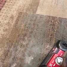 vacuum the carpet i to vacuum chelley kraft fitness