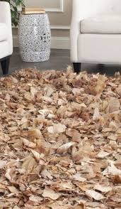 Brown Shag Area Rug by 17 Best Rugs Images On Pinterest Shag Rugs Area Rugs And Rug