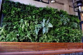 plants on walls revisits urban bistro a year later u2014 florafelt