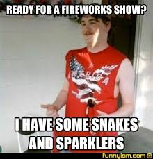 Fireworks Meme - ready for a fireworks show i have some snakes and sparklers