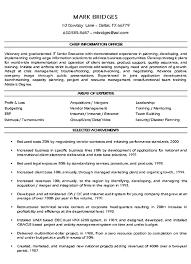 cio technology executive resume example executive resume and