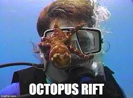 Scuba Meme - schnellebuntebilder on twitter our first homebrewn meme octopus