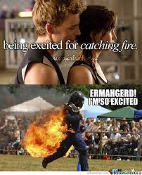 10 best catching fire memes images on pinterest the hunger game