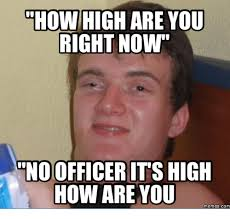 High Meme - 25 best memes about no officer its high how are you no