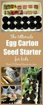 527 best eco garden images on pinterest gardening vegetable