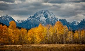 grand teton national park photoburst the fall glow by michael horan grand teton national