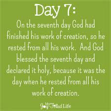 the days of creation lunch my joy filled life