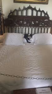 cat in hemingway u0027s bed picture of the ernest hemingway home and