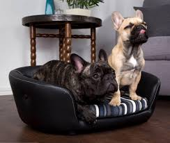 Leather Sofa And Dogs Scruffs Regent Handmade Pet Sofa Bed For Dogs