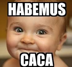 Meme Caca - memes graciosos de beb礬s con caca y pa祓ales