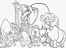 giraffe preschool coloring image gallery website zoo animals