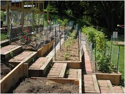 backyards chic terraced garden designs terraces architecture