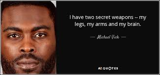 Mike Vick Memes - michael vick steelers memes 54138 applestory