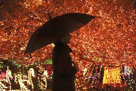 lights of christmas stanwood our annual list of holiday events in snohomish county and beyond