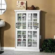 Multimedia Storage Cabinet With Doors 24 Media Cabinet Great Extraordinary Media Storage Cabinet With