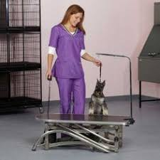 go pet club grooming table electric motor go pet club grooming table electric motor scissor lift table