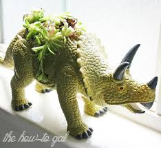 the how to gal diy dinosaur succulent planter