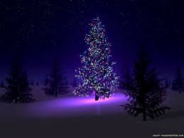 white outdoor lighted christmas trees luxury white outdoor lighted christmas trees home decoration ideas