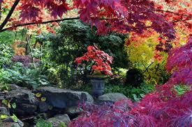Botanical Garden Bellevue Bellevue Botanical Garden Greg Prohl My Personal Site About