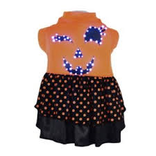 blue polka dot dog dress with leash and d ring pampered paw gifts