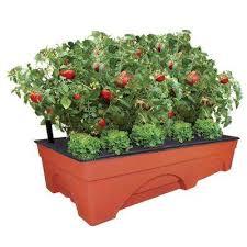 Indoor Plant Vases Indoor Outdoor Planters Pots U0026 Planters The Home Depot