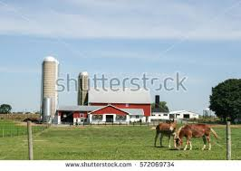 Tire Barn Lancaster Pa Lancaster Pa Stock Images Royalty Free Images U0026 Vectors