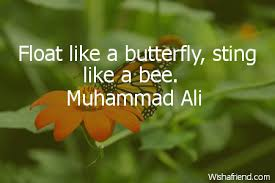 muhammad ali quote float like a butterfly sting like a bee