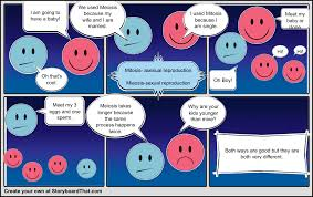 meiosis and mitosis project storyboard by cameronpirozzi