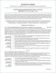 esthetician resume exle esthetician resume sle artemushka