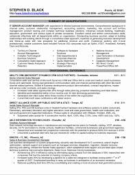 executive resumes amusing free templates for resumes word how to get resume template
