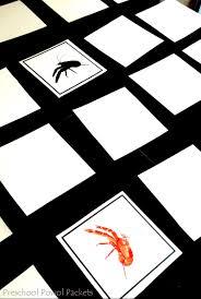 ocean animals shadow matching cards preschool activity preschool