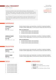 it professional resume template ueno professional resume template