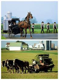 amish country farm and life sarah u0027s country kitchen amish