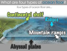 study guide the seafloor answer key 32 best cc c1 w18 images on pinterest homeschool geography and