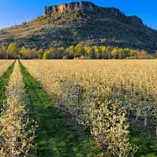 Table Mountain Oregon Best Oregon Hikes In Medford And Southern Oregon