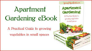 Patio Vegetables by Apartment Gardening Step By Step Guide For A Patio Vegetable Garden
