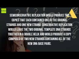 what is the semiconservative model of dna replication youtube