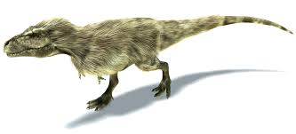 tyrannosaurus rex a dinosaur a day
