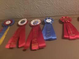 ribbon display displaying award ribbons thriftyfun