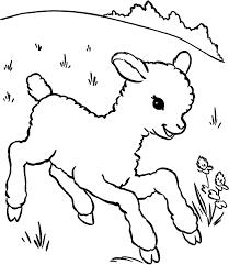 lamb color coloring