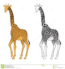 set of two giraffes wall stickers royalty free stock image royalty free stock photo