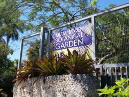 Miami Beach Botanical Garden by
