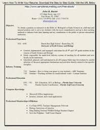 Free Online Resume Templates Printable Free Resume Printable Resume Template And Professional Resume