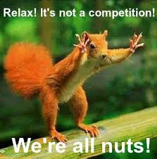 Squirrel Nuts Meme - competitive nuts meme anonamos3021