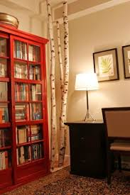 birch trees with red bookshelf birches birch and trees