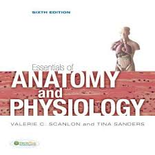 Essentials Of Human Anatomy And Physiology Book Online Essentials Of Anatomy And Physiology Sixth Edition Podbean