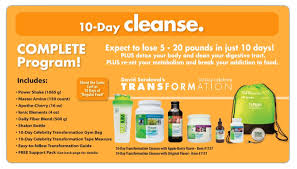 purium transformation purium s 10 day cleanse