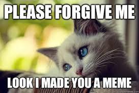 Forgive Me Meme - please forgive me look i made you a meme first world problems