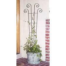 houseplant trellis amazon com panacea products 48 inch wave pot trellis green